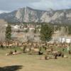 A view from Lake Estes Executive 9 Hole Course